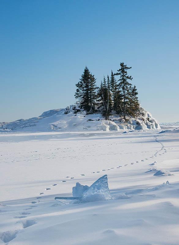 snow tracks in winter