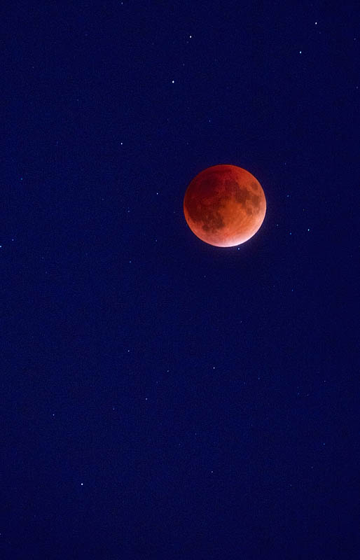 Blood moon during lunar total eclipse in September 2015 over Evansville, IN, USA