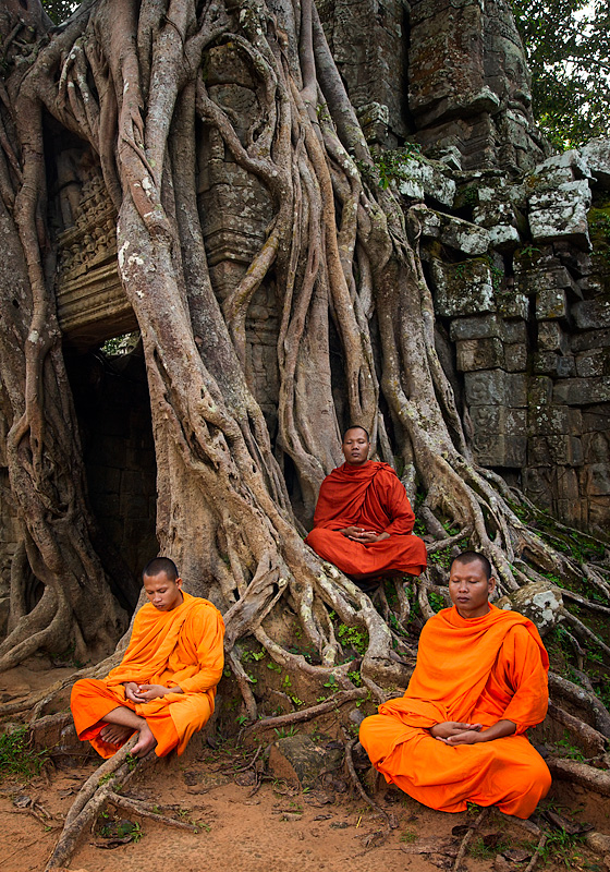 mystery photo monks praying under tree