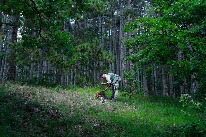 truffle hunting in Abruzzo Italy